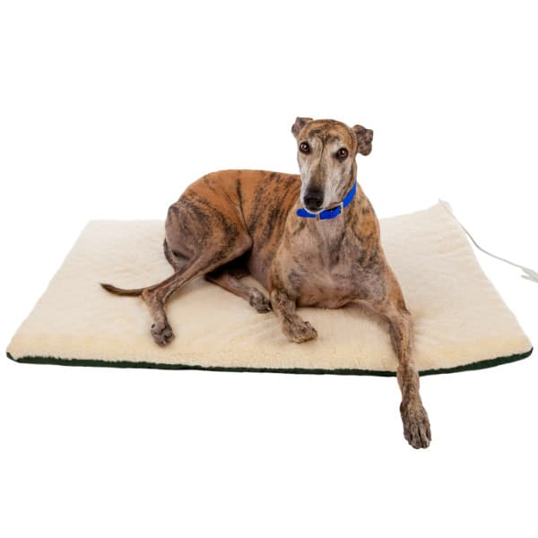 This cozy bed warms to your pet's natural body temperature and has a removable heater for cooler months.