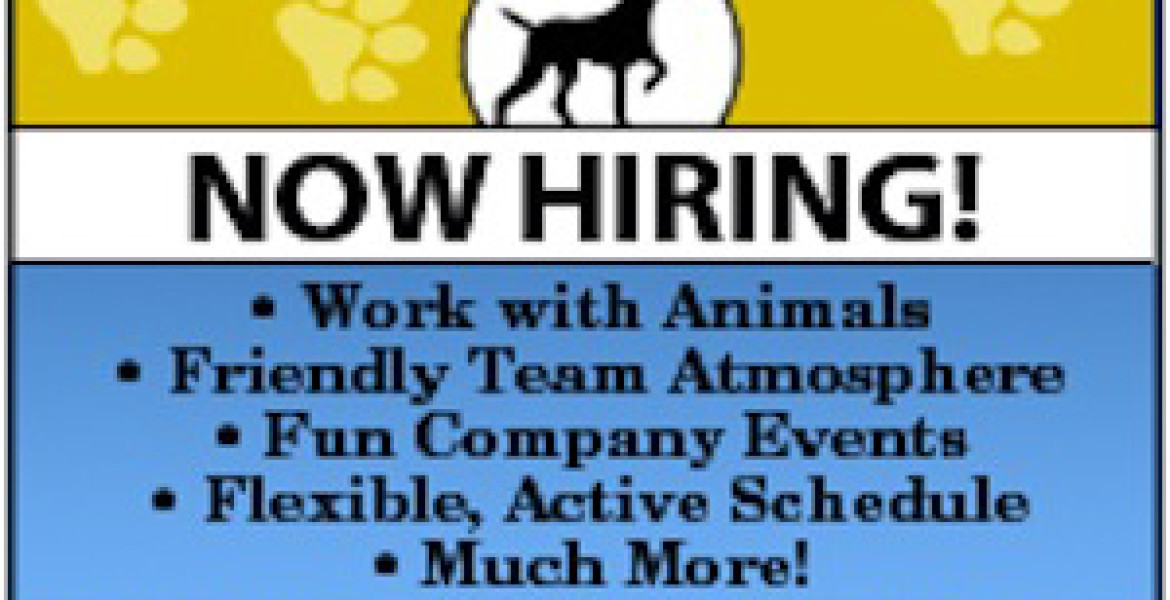 becky s pet care is hiring in northern virginia   becky s pet care