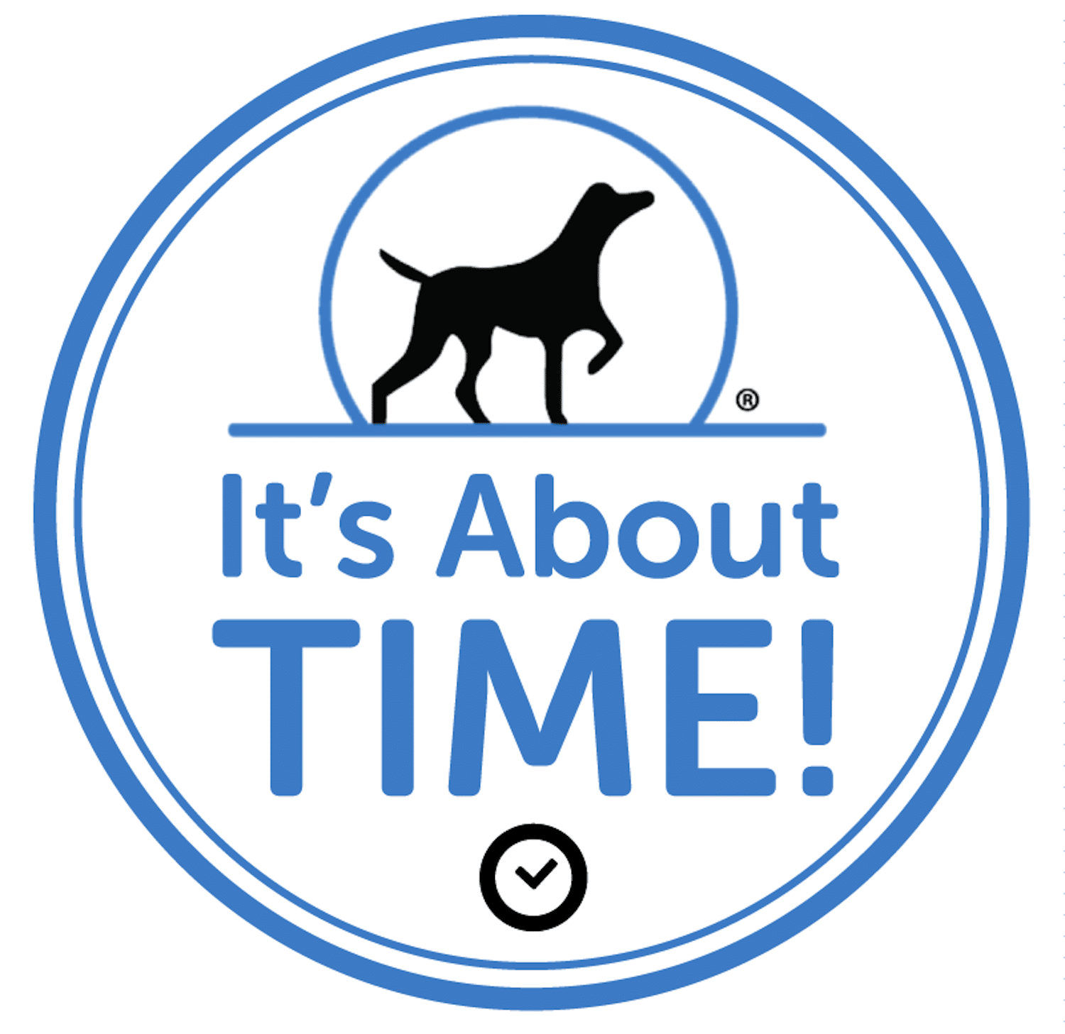 beckys-pet-care-time-based-services-dog-walking-pet-sitting-affordable-pricing